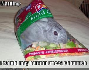 Funny-pictures-your-lettuce-may-contain-traces-of-bunny